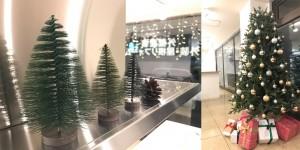 ラボ松クリスマス2019